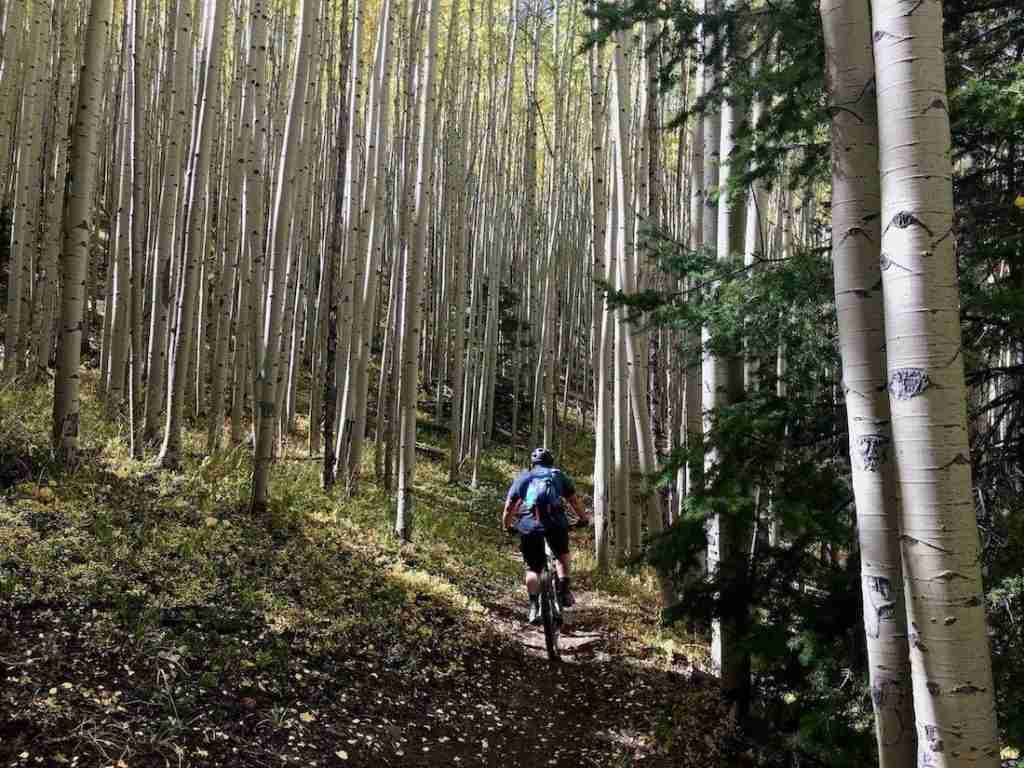 South Boundary Trail // Ride the best mountain biking routes around the world with this complete IMBA Epics list from epic backcountry rides to scenic mountain loops