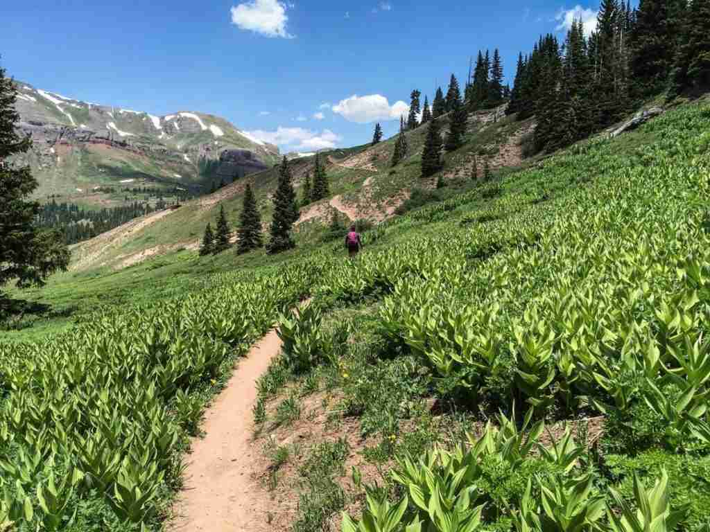 Colorado Trail // Ride the best mountain biking routes around the world with this complete IMBA Epics list from epic backcountry rides to scenic mountain loops